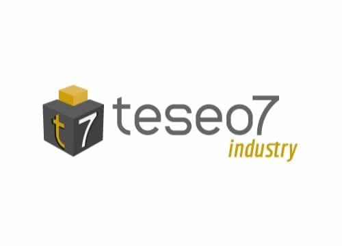 ERP Teseo 7 Industry