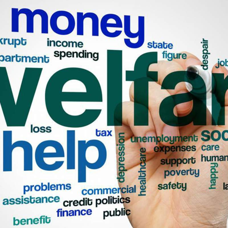 Welfare Aspects
